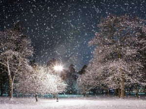snowfall-in-the-city-park-at-night-under-a-street-lamp_middle